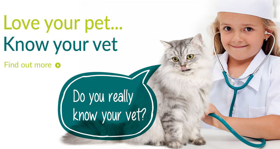 love your pet...Know your vet