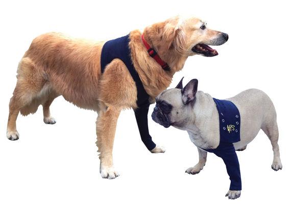 b333f1b4c8fe The Medical Pet Shirt – alternative to Elizabethan Buster Collar