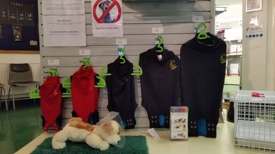 Medical Pet Shirts from Daisy Street Vet, Blackburn, Lancashire