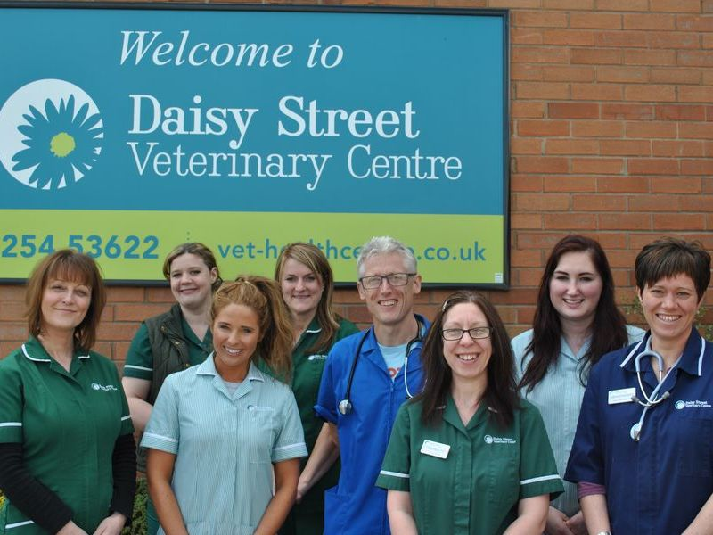 Vet in Blackburn. Blackburn's premier Veterinary Surgery in Lancashire. Daisy street veterinary centre blackburn. vet blackburn