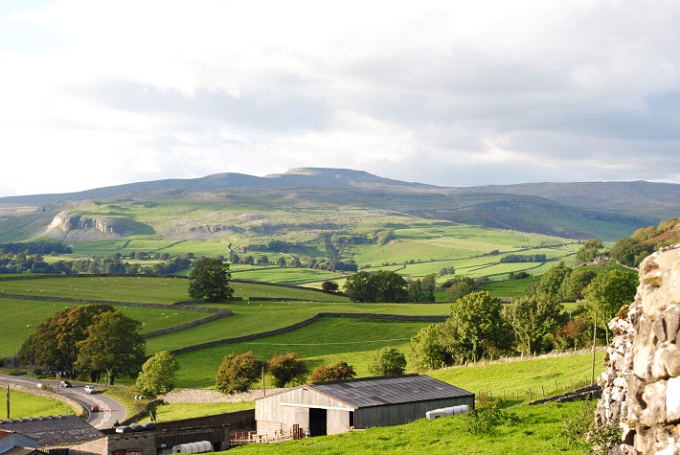 The family farm in the Dales – summer, with Ingleborough in the background.